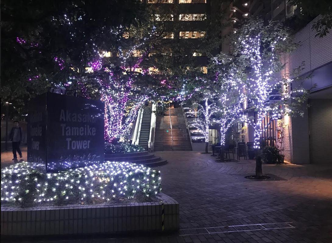 【今年もクリスマスがやってくる~♪】