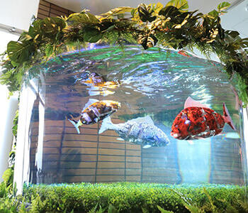 水槽を泳ぐ魚ロボット